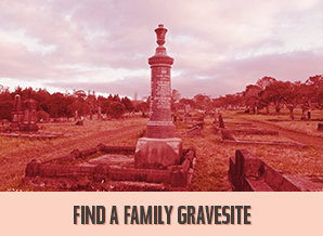Find a Family Gravesite, WWI Display & a Band.